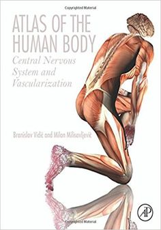 Atlas of the Human Body.   Atlas of the Human Body eBook PDF Free Download Edited by Branislav Vidic and Milan Milisavljevic Central Nervous System and Vascularization Pu....