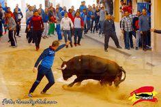 torodigital: Fiestas de Sant Antoni en Canet d'En Berenguer