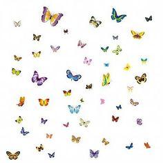 Muursticker prachtige gekleurde vlinders