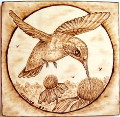 "Very Detailed pyrography | 15-2011, ""Hummingbird and Cones"", for the 'Hummer' lover."