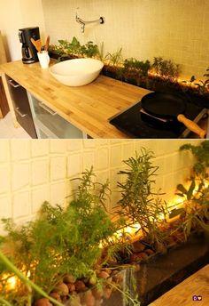 dcoracao.com - blog de decoração: HORTA NA COZINHA
