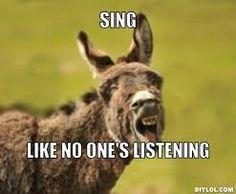 3fa95e92594515ff20e2c67100928a42 singing meme donkeys image result for donkey meme donkey pinterest donkey,Donkey Waffles Meme