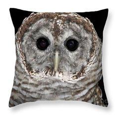 "Barred #Owl 3 14"" x 14"" Throw Pillow by Rose Santuci-Sofranko.  Multiple sizes available. .... #sale #gifts #interiordesign #interiordecoration #decor #home #pillows #artwork #Christmas #presents #Artist4God #RoseSantuciSofranko #birds"