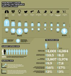 Infographics: Raconteur Dashboards 2011 on Behance