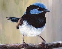 Image result for Australian bird art