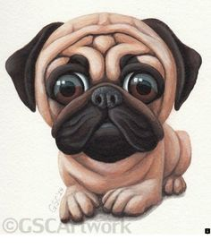 >>Check out the webpage to see more about cheap pugs for sale. Click the link to learn more~~~~~~ The web presence is worth checking out. Pugs, Pug Puppies, Caricatures, Dog Drawing Simple, Baby Animals, Cute Animals, Pug Art, Cute Animal Drawings, Dog Drawings