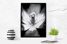 Lily Black And White Instant Download by LydiaVideiraLight on Etsy