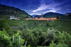 """Italy is often called """"il Bel Paese"""", """" The beautiful country"""" and I think that this is well deserved. Pure Beauty, Country Living, Vineyard, Pure Products, Landscape, City, Places, Nature, Outdoor"""