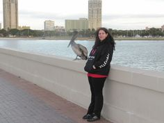 the pelicane and me in St.Pete