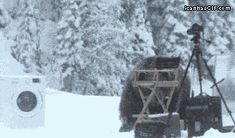 One time, at bear camp… (I don't even know... click through for gif)