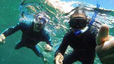 Snorkeling with Sea Lions on Isla Epiritu Santo. Taken in Dec 2013 while staying in La Paz, Baja California Sur, Mexico