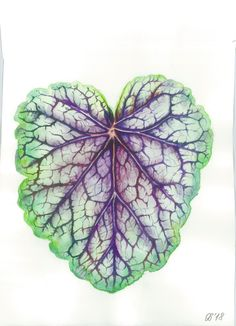 Watercolor leaf Paper Plants, Watercolor Leaves, My Arts, Etsy