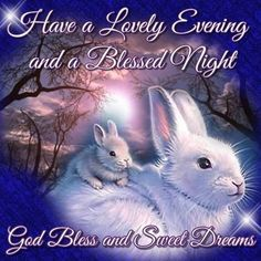 Good Night Sister, Good Night My Friend, Good Night All, Good Night Prayer, Good Night Everyone, Good Night Blessings, Cute Good Morning, Good Night Sweet Dreams, Good Night Moon