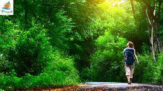 Walk with the Nature - Enjoy the Greenery at Pragati Resorts