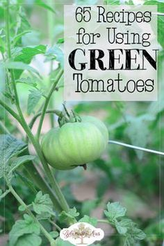 65 Recipes for how to use and preserve GREEN tomatoes