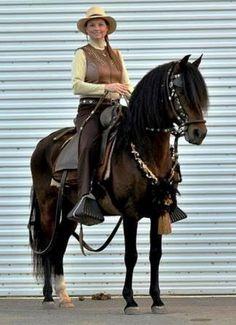 RainTree Peruvian Horses -  DW TUILO+-Peruvian Paso
