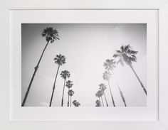"""""""California Palms"""" - Art Print by Lauren Armellini in beautiful frame options and a variety of sizes."""