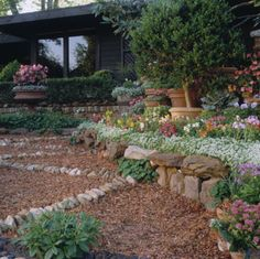 Landscape a New Site Don't be intimidated at the prospect of landscaping an entire yard. By breaking the work into five distinct phases, you can handle the job with ease.