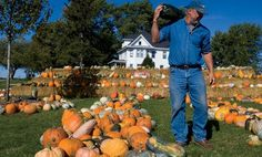 Illinois Farm Bureau Partners - pumpkin archives (articles, recipes, and great ideas!)