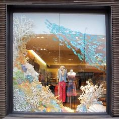 anthropologie display | anthropologie window display for Earth Day | shops & displays