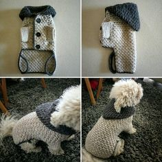 Small dog Sweater / Crochet Dog Clothes / Pet clothing / Winter Dog Hoodie / Warm Dog Clothes - Dog Outfits / Puppy sweater / BubaDog - Alexis is Word! Small Dog Sweaters, Small Dog Clothes, Puppy Clothes, Puppy Sweaters, Crochet Dog Clothes, Pull Crochet, Dog Crochet, Crochet Dog Sweater Pattern, Dog Clothes Patterns