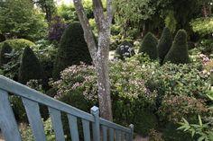 Les jardins Agapanthe - Grigneuseville - Normandie | Alexandre Thomas - Paysagiste