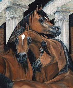 my favorite breed and color. Arabian Art, Arabian Horses, Marwari Horses, Horse Artwork, Cool Artwork, Horse Paintings, Baby Horses, Horses And Dogs, Oil Pastel Colours