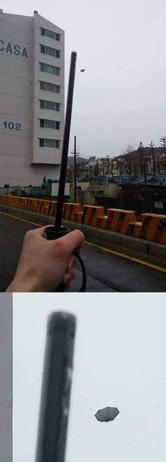 Thanks a lot, umbrella