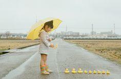 adoro FARM - fotógrafo-coruja