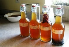 Flavoring Kombucha -- perfect for when my first patch will be done in about 5 days!