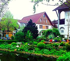 Hotel dreams in Germany ....   #nature #flower #hotel #germany #travel #travelphotography #reiseknipse