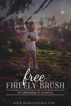 Add some whimsy to your photos with this FREE Firefly Photoshop Brush