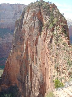 Zions National Park, Utah