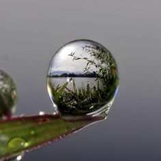 Lake view on a droplet