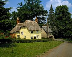 Thatched cottages, Somerset..