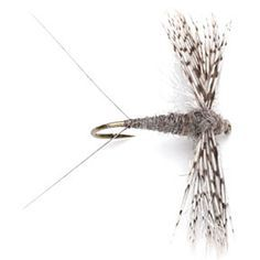 Fly Tying on Pinterest | Fly Tying Patterns, Fly Fishing Flies and ...