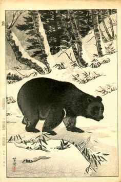 Kuma (A bear strolls through a snow covered landscape), by Shiro Kasamatsu, 1955 -- See also at: http://www.ukiyoe-gallery.com/gallery3.htm