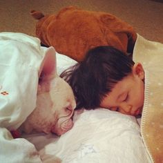 Lovely friendship between a named Tasuku and his French Bulldog 'Muu'. Aya Sakai, the boy's mother, is taking pictures of their adorable friendship and sharing them on Instagram