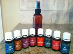 3 All Natural Bug Spray Recipes using essential oils PLUS tips to keep bugs out of your home!