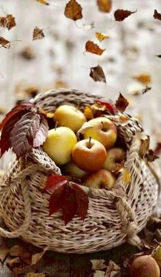 Fruits And Veggies, Vegetables, November Wallpaper, Wolf Pictures, Autumn Lights, Calendar Wallpaper, Apple Fruit, Autumn Scenery, Delicious Fruit