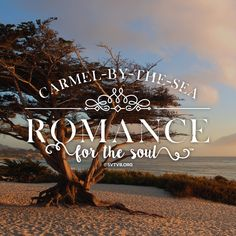 Quaint and charming architecture, glorious flowers, trees draped in lacy moss and the tinkling of the surf on the sandy shore create moments just right for romance here in Carmel-by-the-Sea. Monterey County, Monterey Bay, Premier Wine, Surfing, Trees, Romance, Neon Signs, Community, In This Moment
