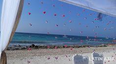 #natural #flowers #backdrop #indiandestinationweddings #cancun #rivieramaya by @weddingcancun