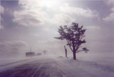 What a blustery day!  But in true Aroostook fashion, that sun keeps shining!  |  Caribou Road, Limestone, Maine