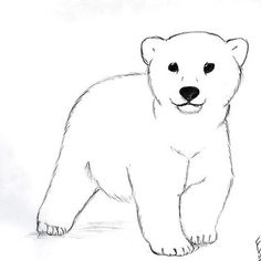 Cute Little Polar Bear Tattoo Design 35 Mind-Blowing Sketch Style Tattoo Designs Polar Bear Drawing, Polar Bear Tattoo, Teddy Bear Tattoos, Baby Bear Tattoo, Bear Sketch, Baby Panda Bears, White Polar Bear, Bear Coloring Pages, Bear Pictures