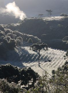 Amanhecer gelado (Frosty Morning) by Miriam Cardoso de Souza, Caxias do Sul, Brazil, via Flickr