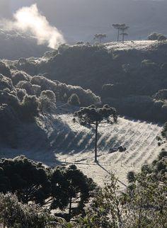 Amanhecer gelado (Frosty Morning) by Miriam Cardoso de Souza, Caxias do Sul, RS, Brazil, via Flickr