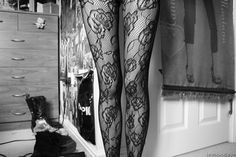 Animated gif of a bunch of leggings and hose/stockings.