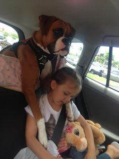Boxer, Lily & friend---double protection..;-)