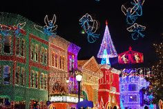 Osborne Spectacle of lights!  One of the best things about going to Disney around the holidays!