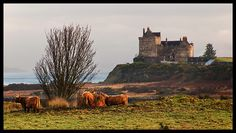 Duart Castle Isle of Mull, by Peter Ribbeck